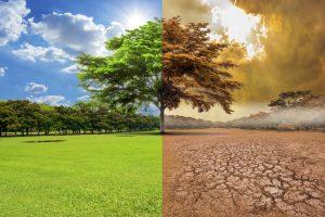 cambio-climatico-causas-consecuencias-2